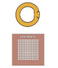 Griglie TEM per tomografia, griglie di carbonio pirolitico, Chen Grids