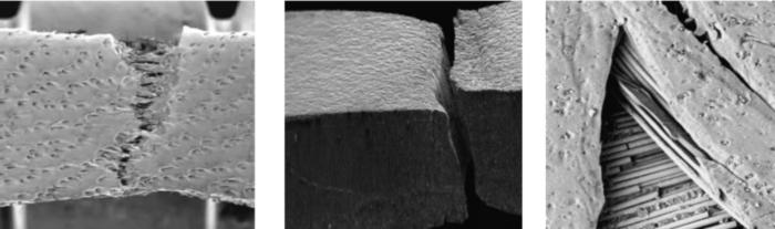 Gli stage tensili tradizionali consentono di avere dati sulla resistenza e le capacità dei materiali sottoposti a trazione o compressione ma non forniscono nessuna informazione sulla modifica della struttura durante questi esperimenti.  Con gli stage tensili/compressivi della Deben abbiamo la possibilità di installare questi stage nelle camere dei microscopi elettronici, nei tavolini dei microscopi ottici, nei sistemi XRD, XRM (uXCT) etc. per avere anche le informazioni strutturali dei materiali durante gli esperimenti.  Tutti gli stage hanno  viti senza fine simmetriche per avere l'area di osservazione sempre al centro, sono controllate via software ed hanno la possibilità di effettuare trazioni, compressioni e piegamento del campione (con ganasce opzionali a tre o quattro punti)